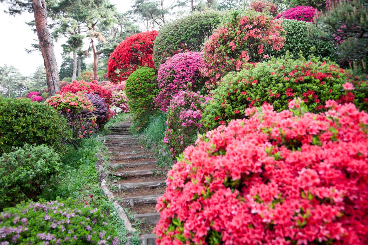 3 ideas geniales para decorar las escaleras de tu jard n for Escaleras para caminar fuera del jardin